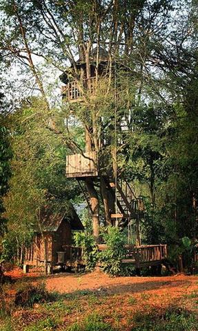 tamarind treehouse (28)