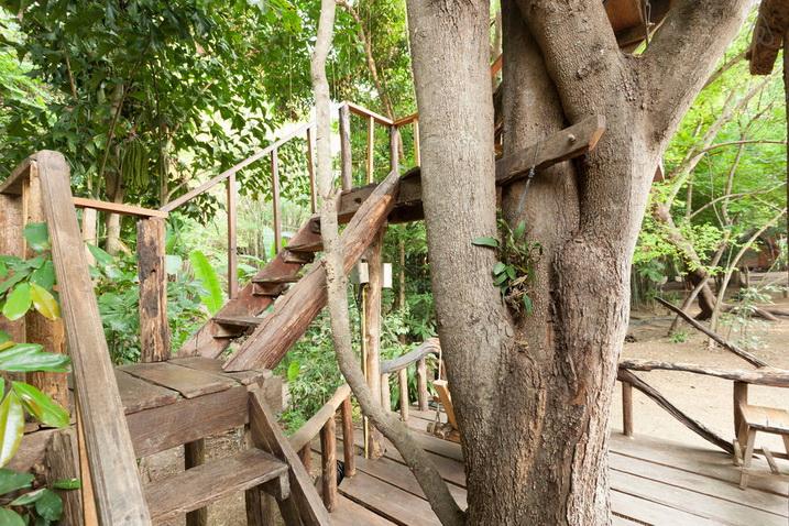 tamarind treehouse (4)
