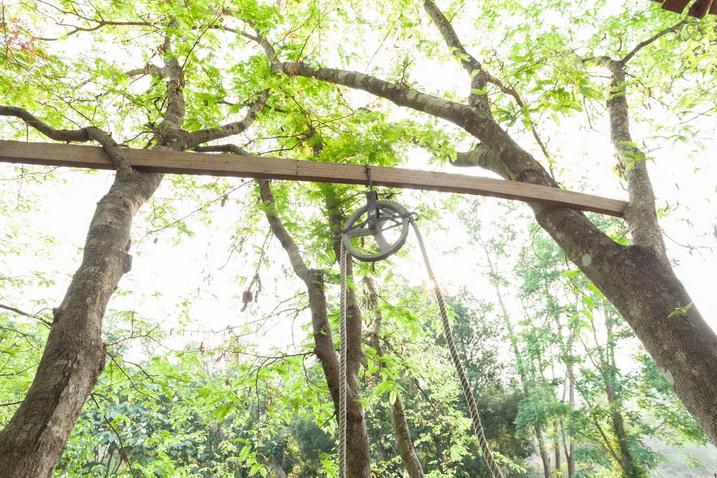 tamarind treehouse (6)