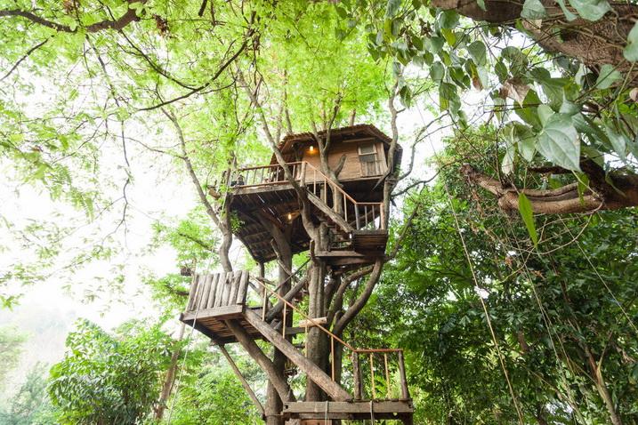 tamarind treehouse (7)