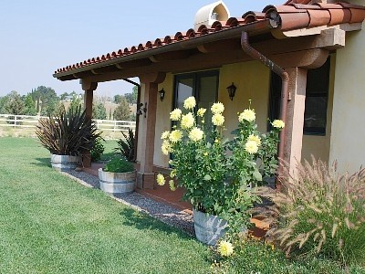 vineyard-and-family-cozy-cottage (1)