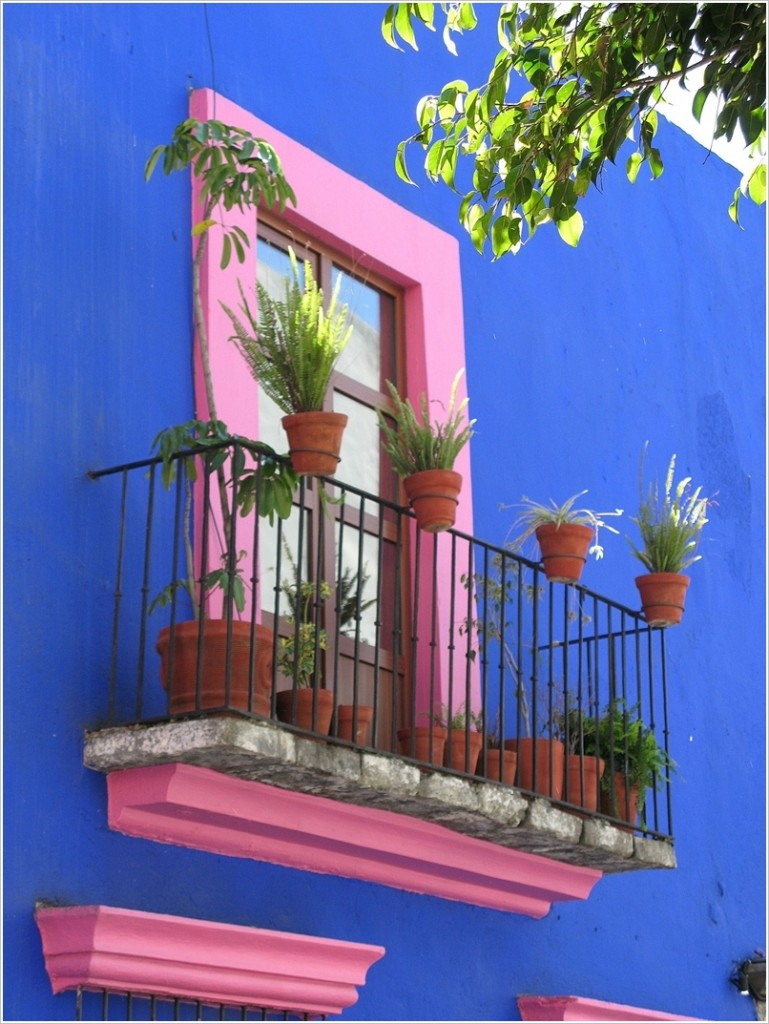 12-amazing-ideas-to-decorate-your-homes-exterior-window (12)