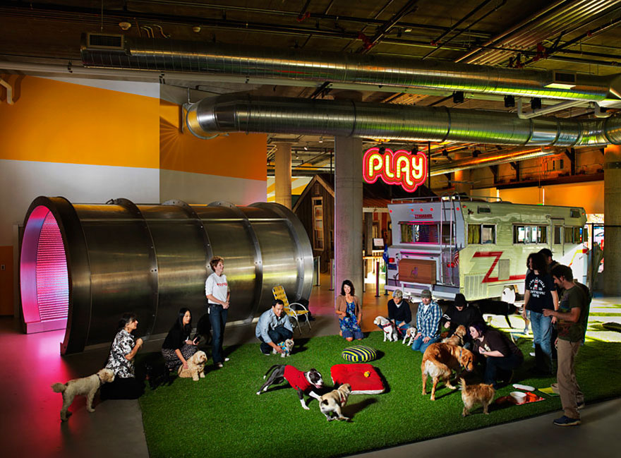 12 coolest offices in the world (49)