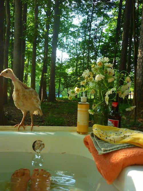 21-wonderful-outdoor-shower-and-bathroom-design-ideas (16)