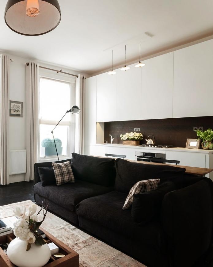 modern classic 48 sq mts apartment (2)