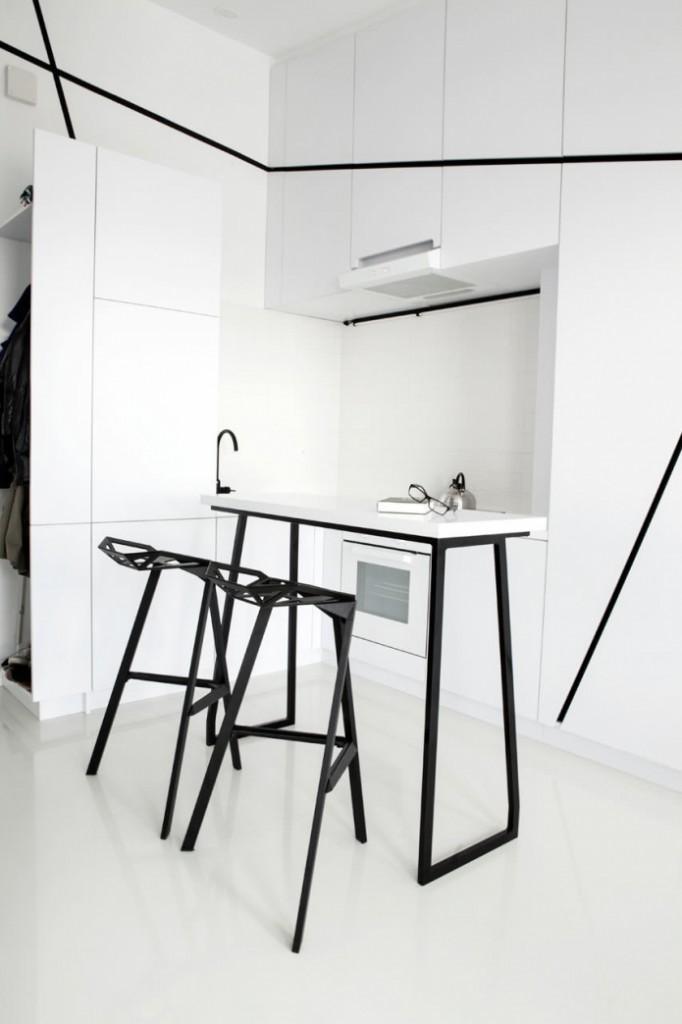 modern monotone 26 sq mts apartment  (10)
