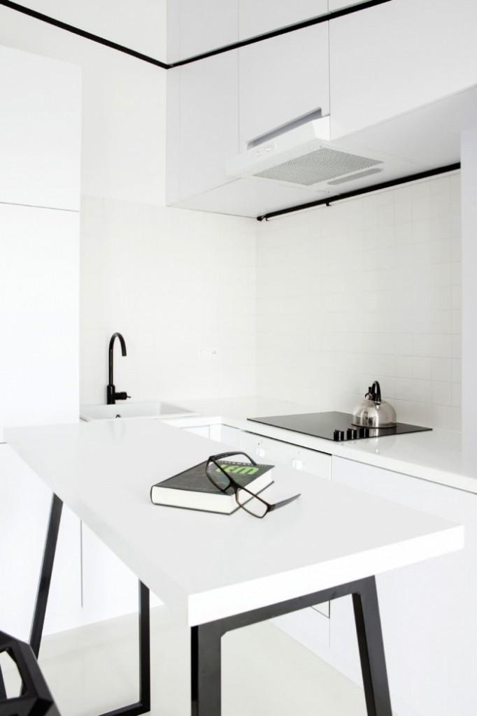 modern monotone 26 sq mts apartment  (11)