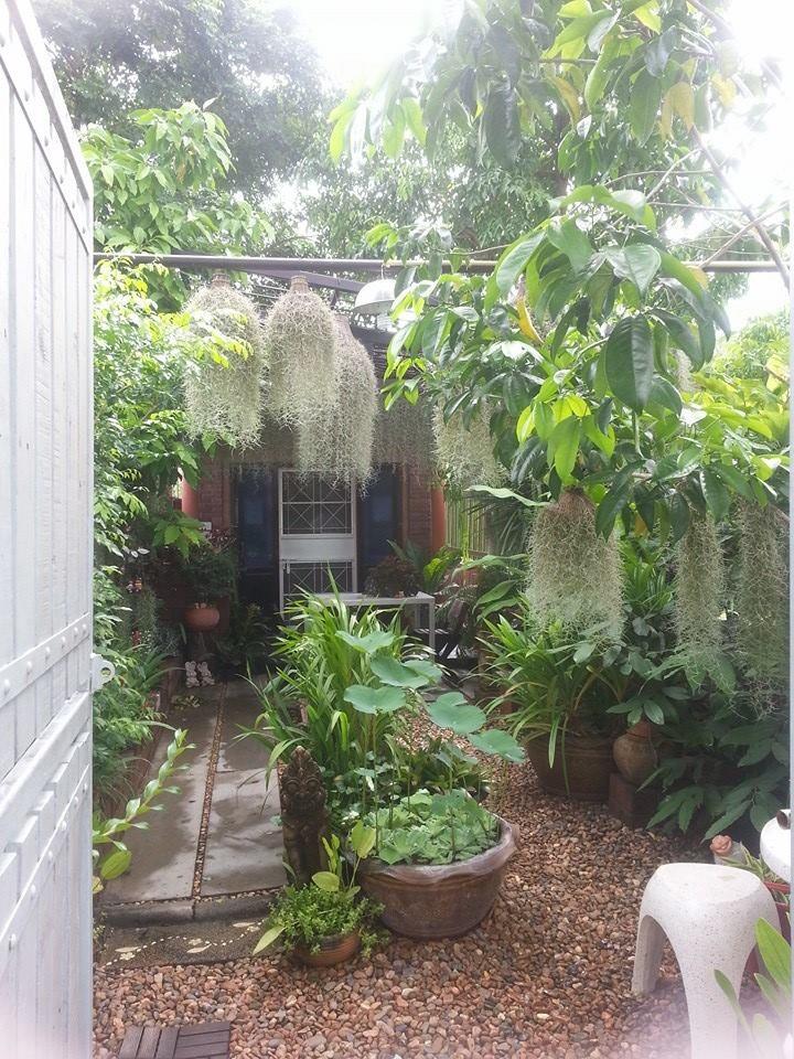 natural happy garden review (11)