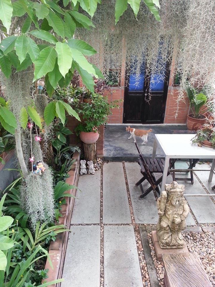 natural happy garden review (12)