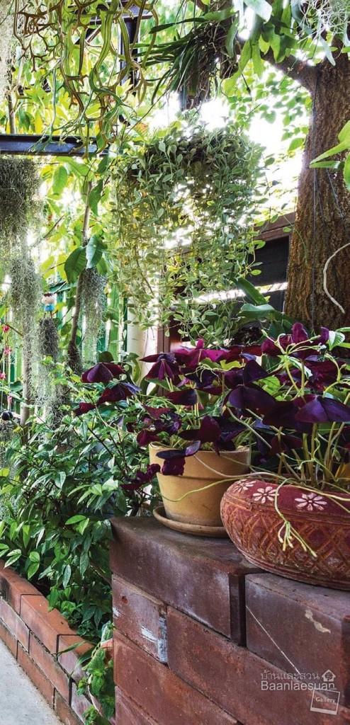 natural happy garden review (2)
