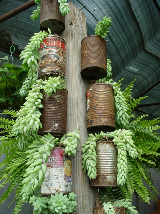 25-easy-peasy-recycled-diy-planters (14)
