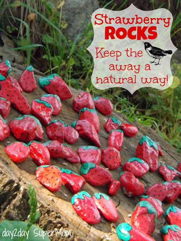 26 rock and stone for garden decorations  (11)