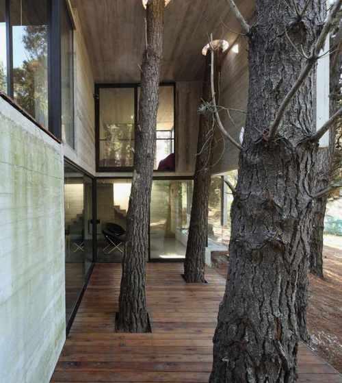 30 concrete house ideas (31)