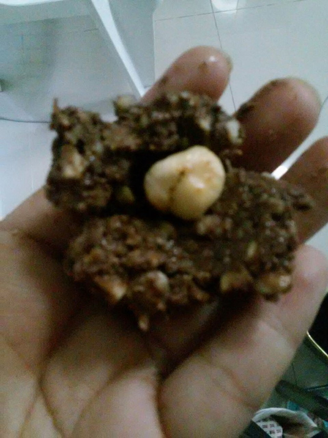 Ferrero Rocher homemade recipe (11)