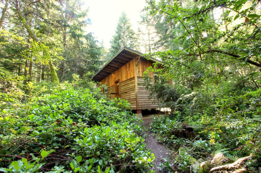 rustic compact cabin (2)