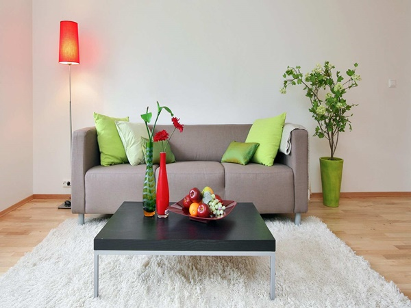 15 ideas for living room decorating (6)