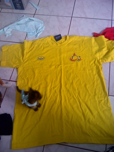 cool cat shirt diy (1)