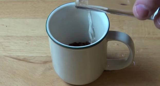 coffee homemade icecream recipe (2)