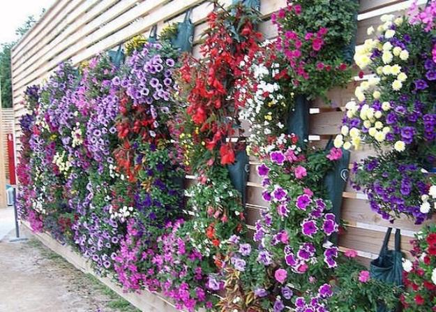 16 ideas for decorating flowers in backyard (7)