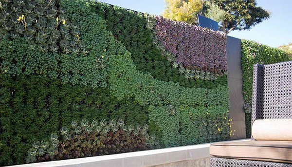 15 green living walls (10)