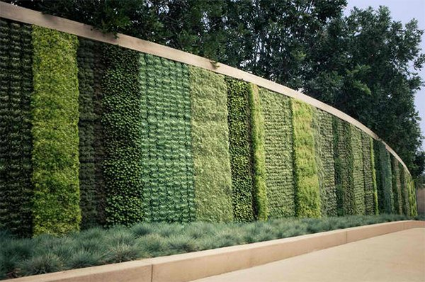 15 green living walls (4)