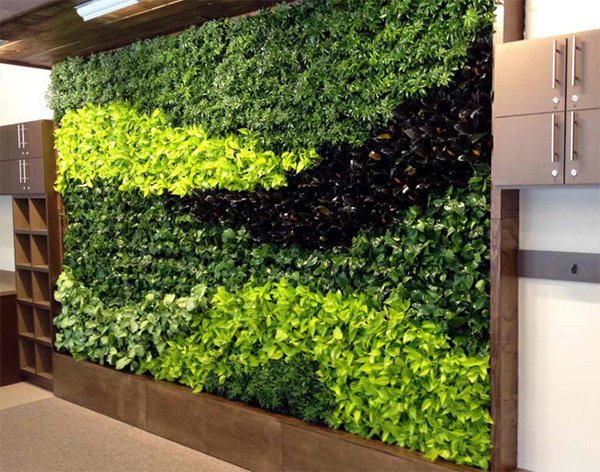 15 green living walls (5)