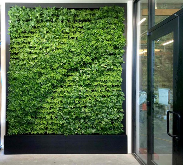 15 green living walls (8)