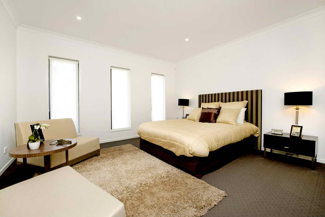 grand modern spacious house_01