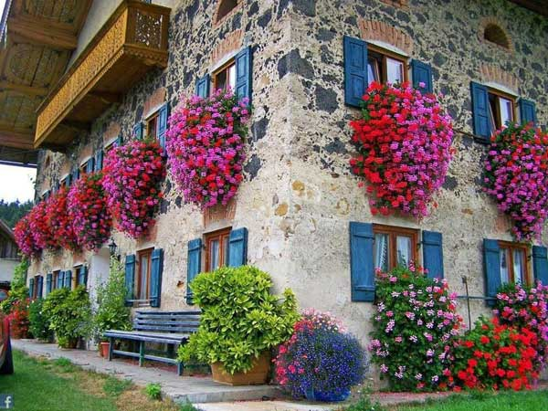 24-ideas-for-charming-exterior-flower-decoration (11)