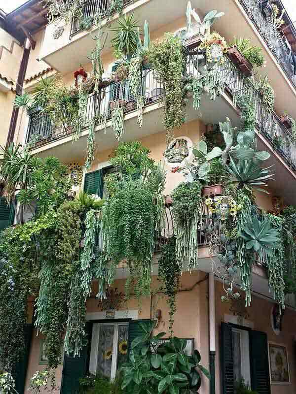 24-ideas-for-charming-exterior-flower-decoration (14)