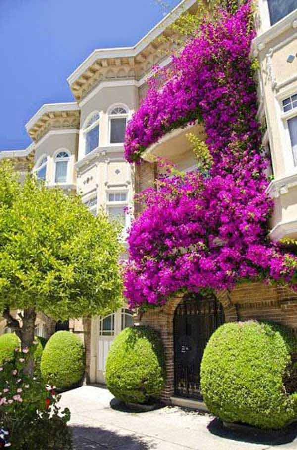 24-ideas-for-charming-exterior-flower-decoration (15)