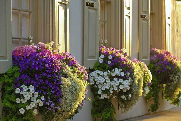 24-ideas-for-charming-exterior-flower-decoration (17)