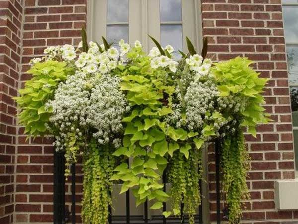 24-ideas-for-charming-exterior-flower-decoration (19)