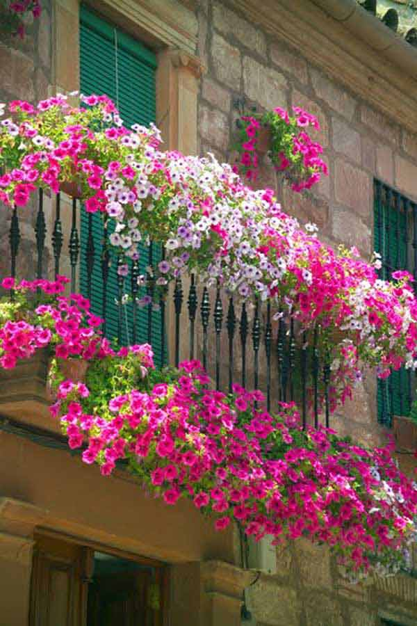 24-ideas-for-charming-exterior-flower-decoration (2)