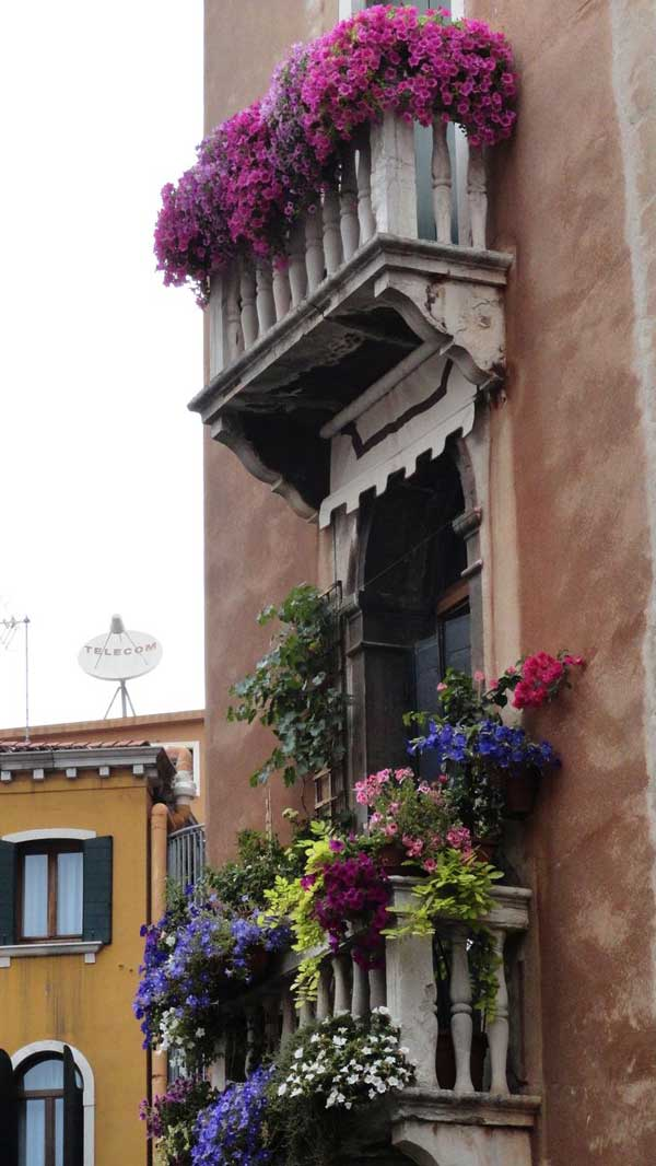 24-ideas-for-charming-exterior-flower-decoration (20)