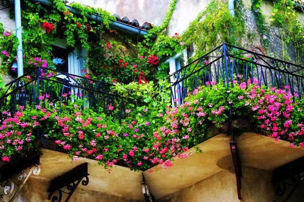 24-ideas-for-charming-exterior-flower-decoration (3)