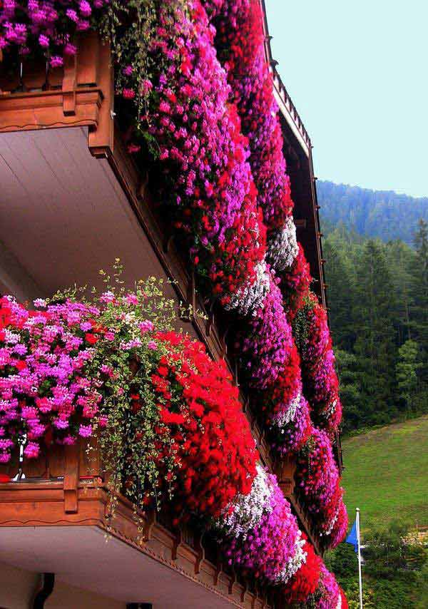24-ideas-for-charming-exterior-flower-decoration (4)