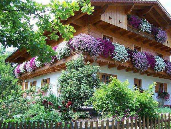 24-ideas-for-charming-exterior-flower-decoration (7)