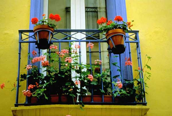 24-ideas-for-charming-exterior-flower-decoration (9)