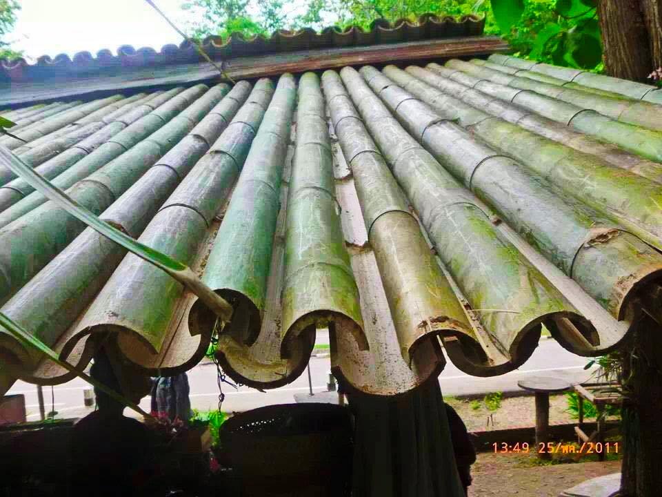 bamboo roof idea (2)