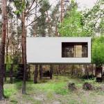 """พาไปชม """"บ้านล่องหนกลางป่า"""" มหัศจรรย์แห่งสถาปัตยกรรมที่คุณต้องทึ่ง!!"""