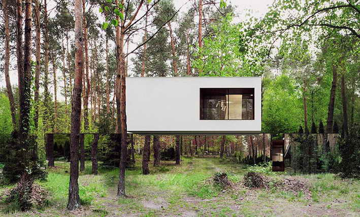 cloaking-mirror-house-in-wood (1)