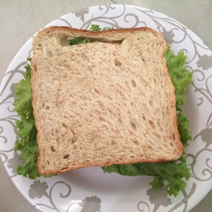 homemade sandwich tuna (10)