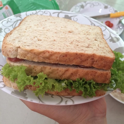homemade sandwich tuna (11)