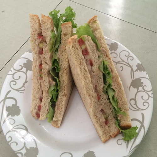 homemade sandwich tuna (12)
