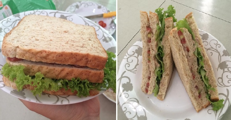 homemade-sandwich-tuna-cover