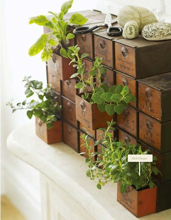 23 ideas to bring nature with indoor garden decoration (12)