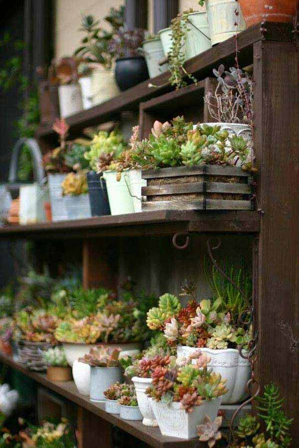 23 ideas to bring nature with indoor garden decoration (15)