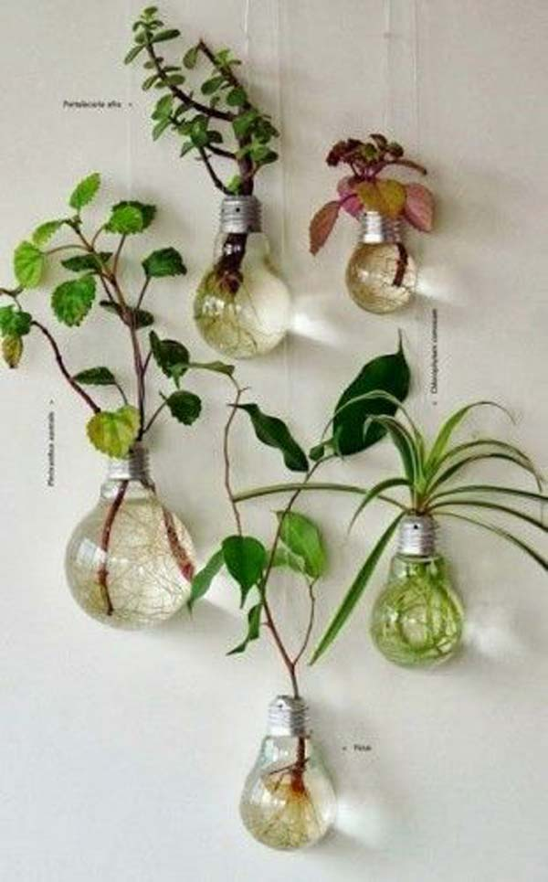 23 ideas to bring nature with indoor garden decoration (16)