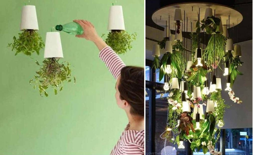 23 ideas to bring nature with indoor garden decoration (23)